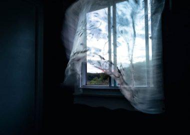 KK149_Blick aus dem Fenster_kristel_990