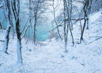 Neue Winterpostkarten